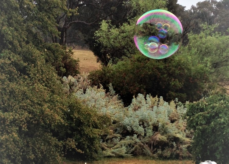 Bubbles in Bubbles