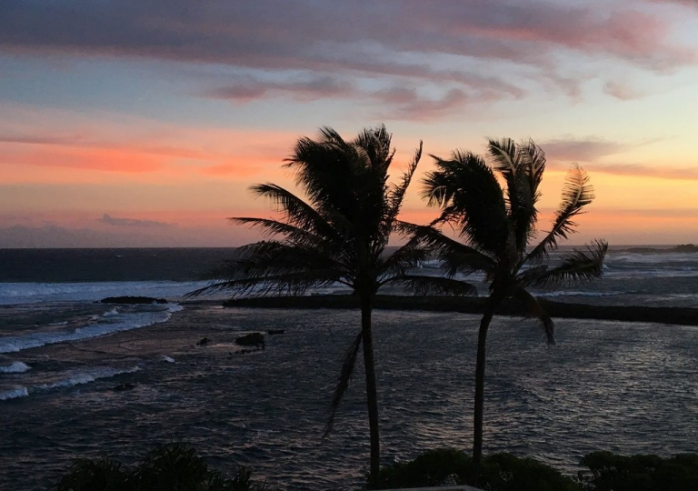 Nature Wind Hawaii
