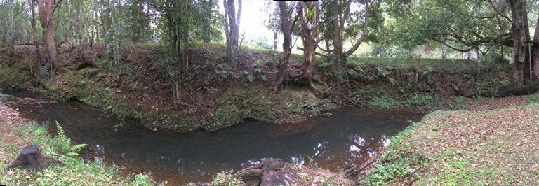 pano nature Crystal Creek